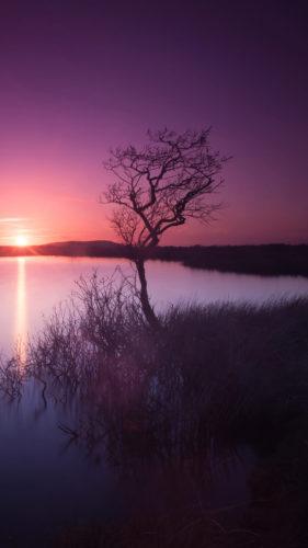 Solnedgang, illustration til tantrisk tema aften